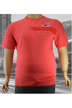 Мъжка тениска с принт (от 2XL до 5XL)